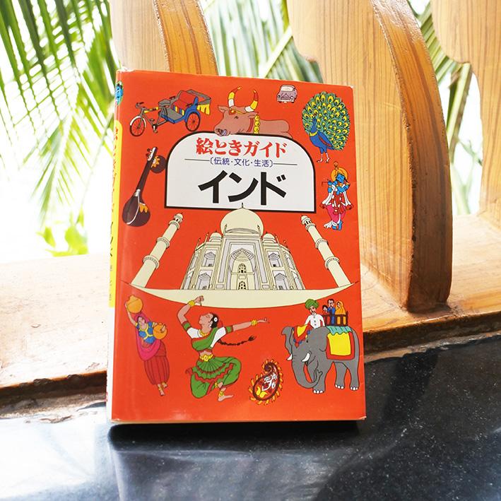絵ときガイドインドをインドで読む