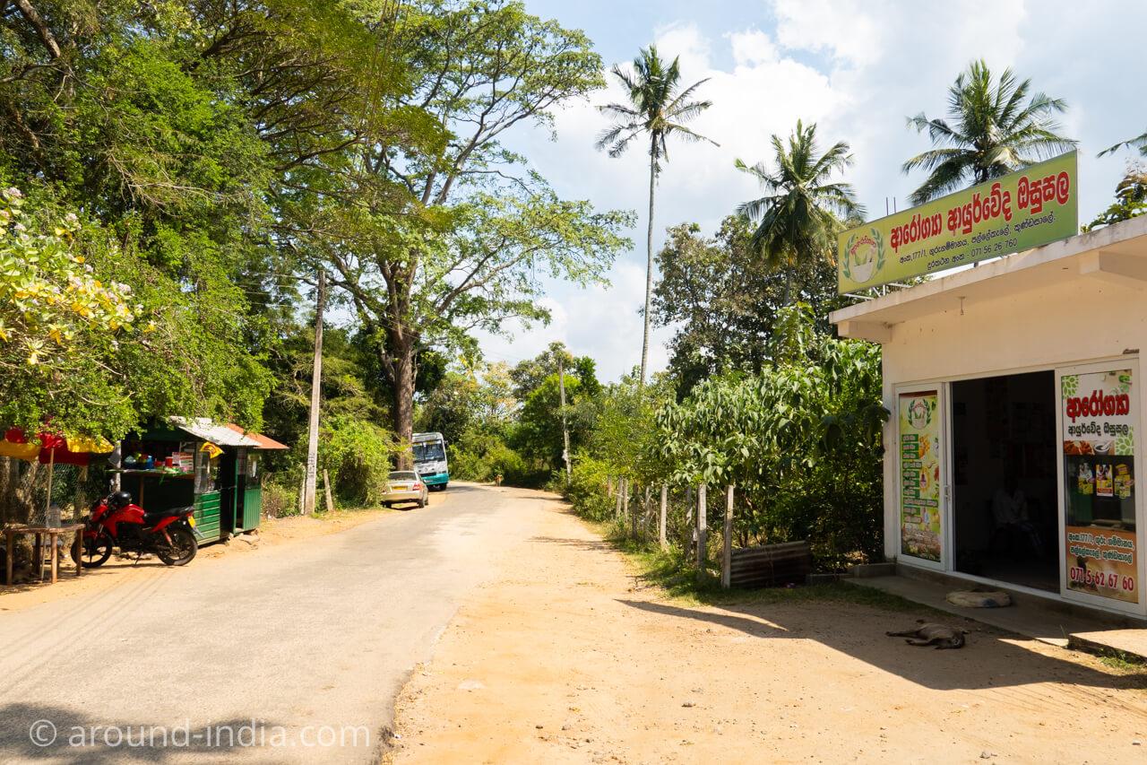 スリランカの国立アーユルヴェーダ病院