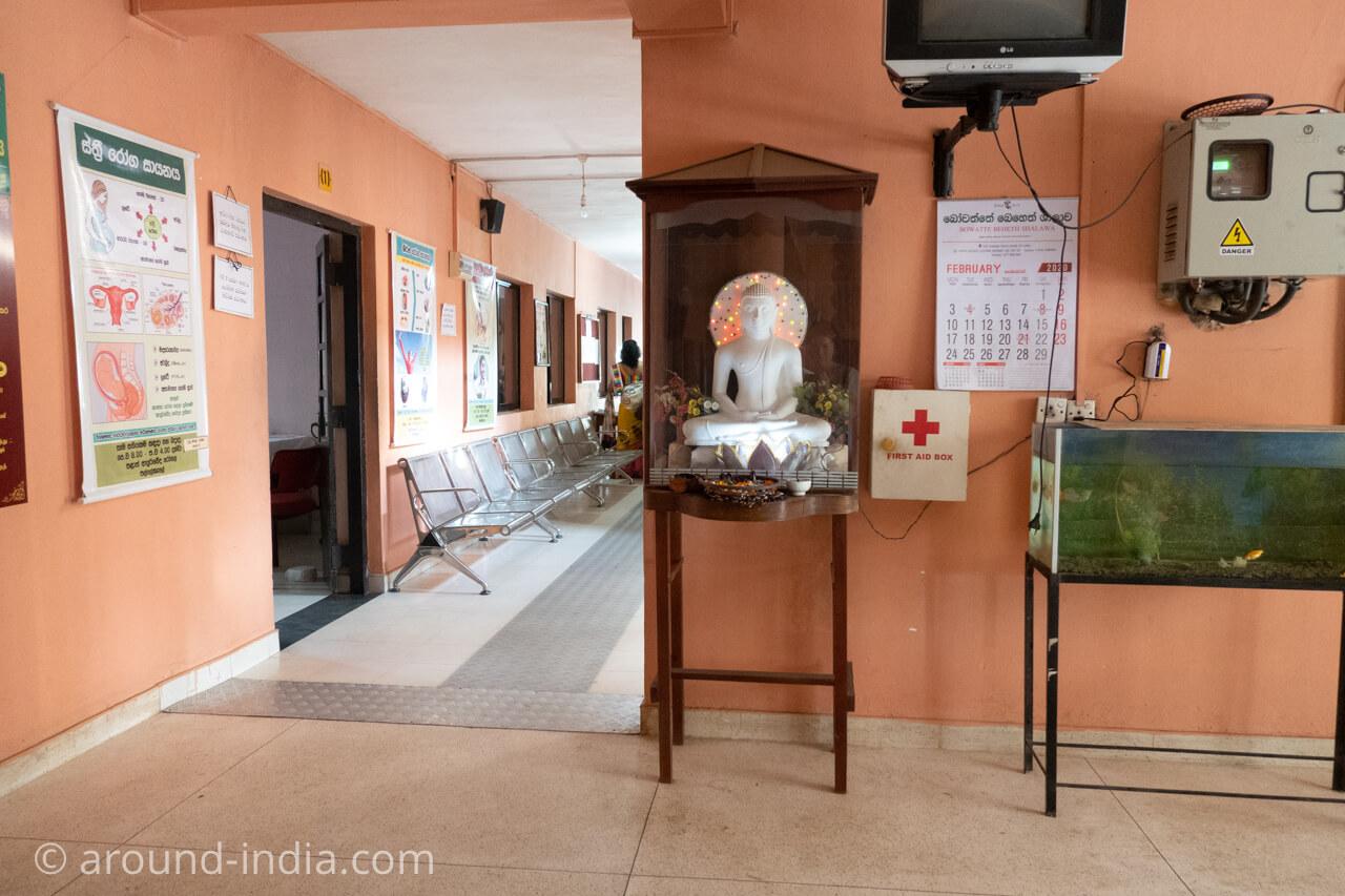 スリランカの国立アーユルヴェーダ病院のブッダ像