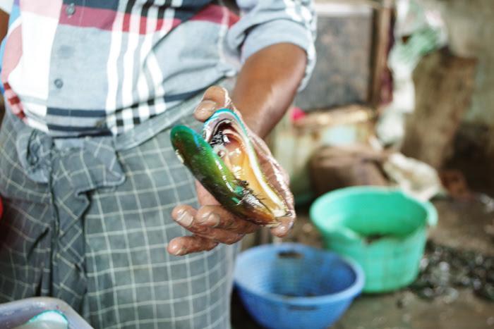 ケララ州カヌールの町中フィッシュマーケット、ムール貝を生で食べてみるかとすすめるおじさん