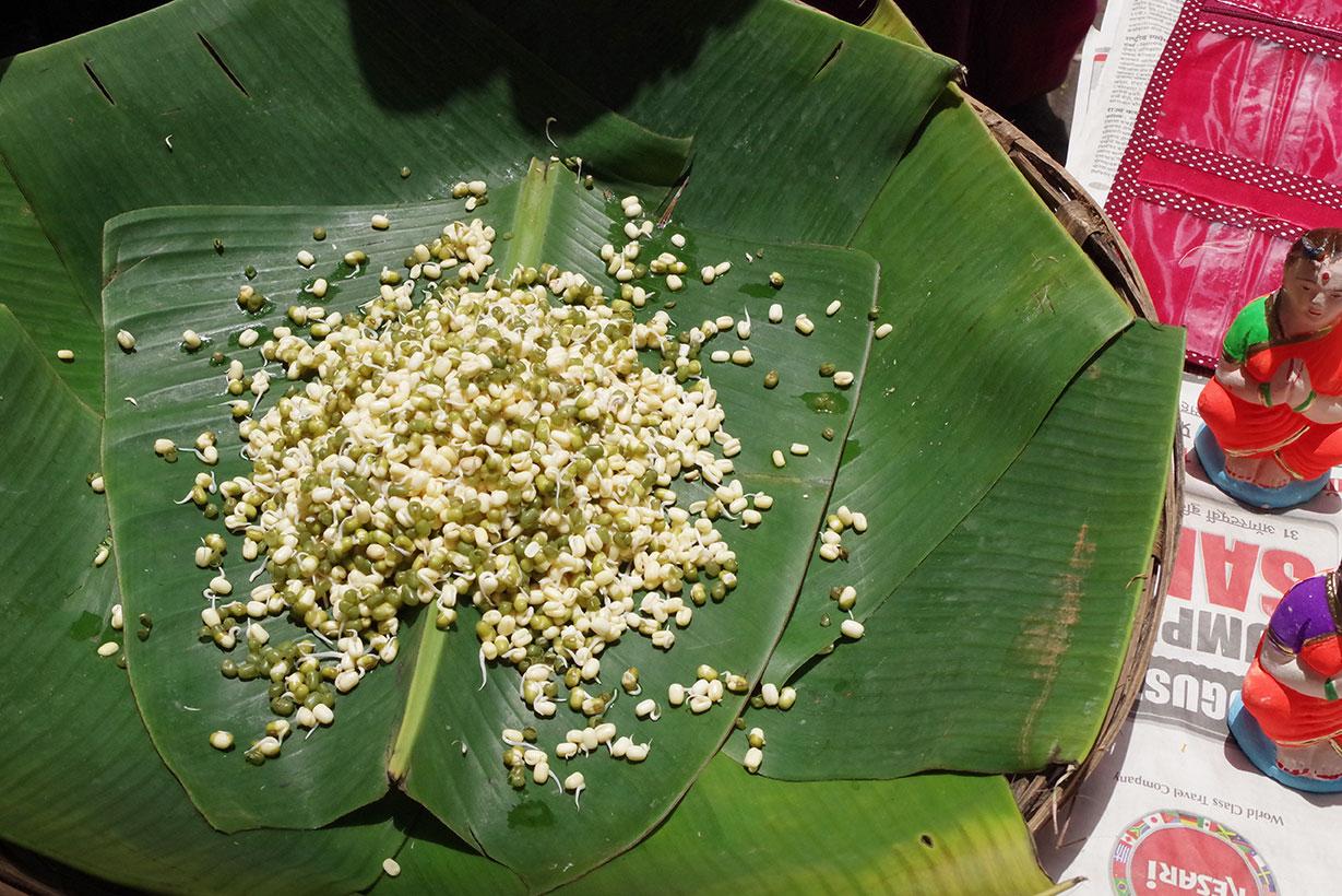 ムンバイ路上の発芽もの 緑豆