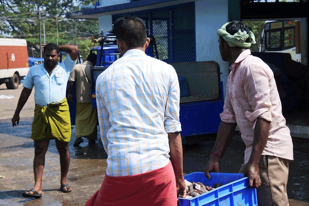 ケララ州カヌールのモダンフィッシュマーケットで、買った魚を運ぶ人