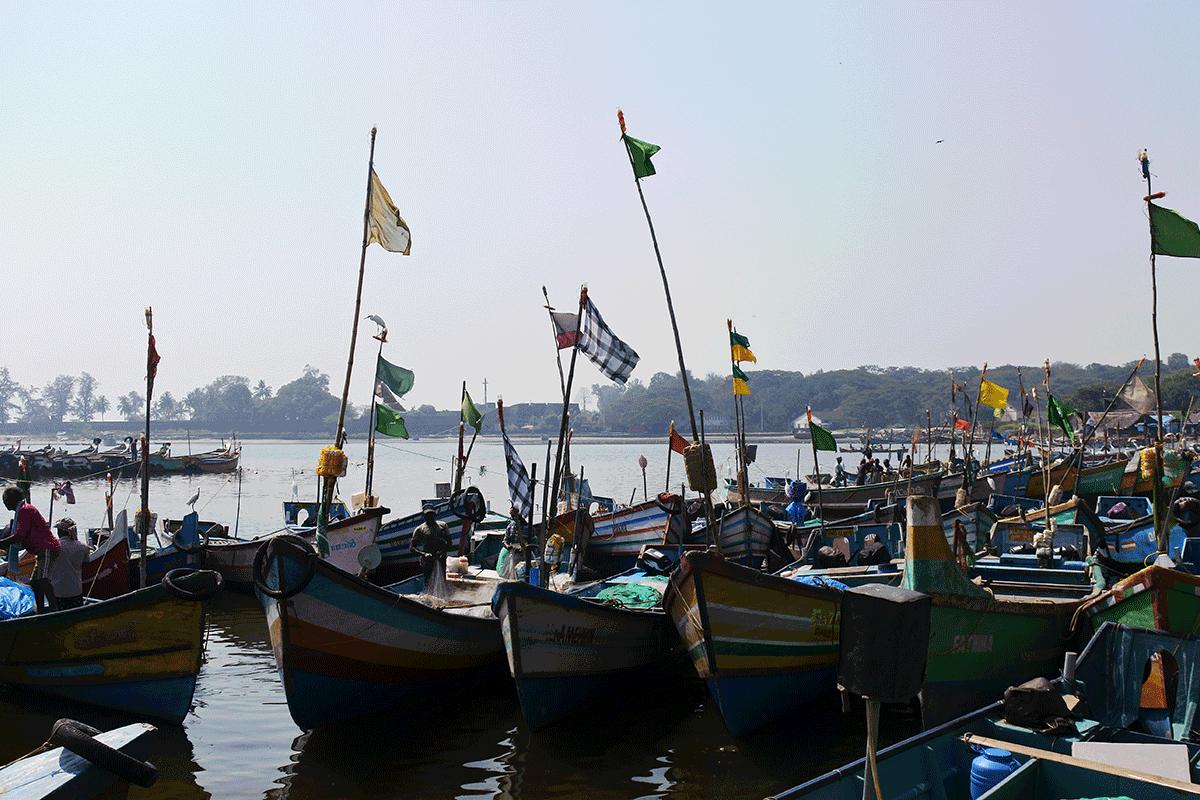 ケララ州カヌールの漁港に停泊する漁船たち