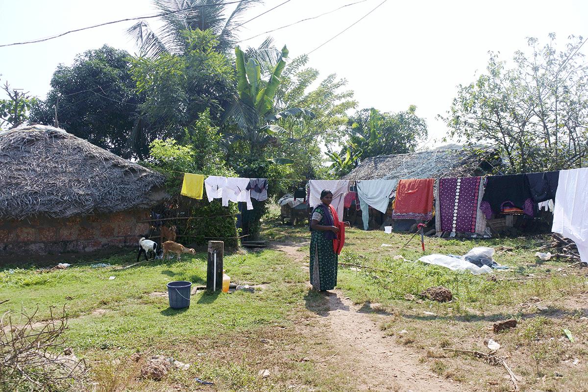 ケララ州カヌールの漁村のお母さんが洗濯物を取り込んでいるところ