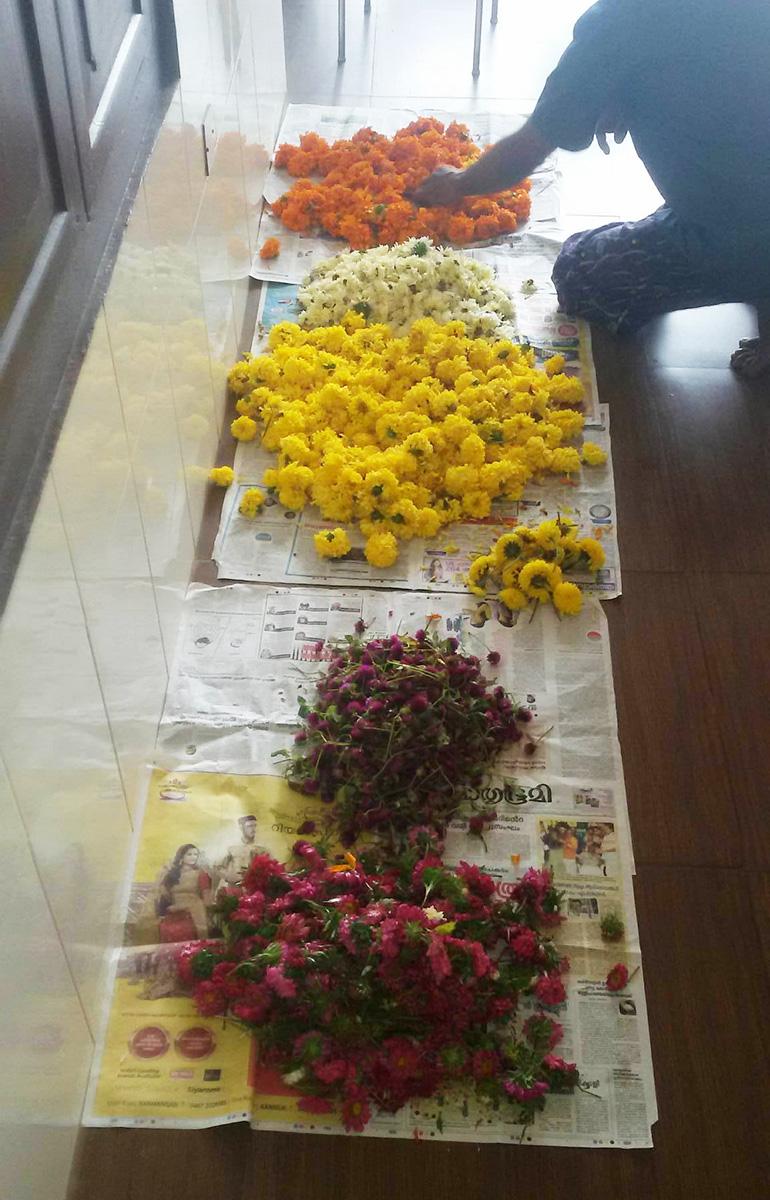 ケララのお祭オナム、PVAアーユルヴェーダ病院で用意した花びら
