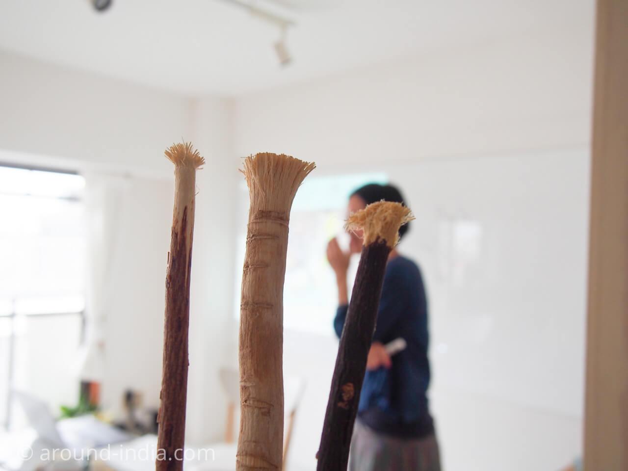 暮らしのアーユルヴェーダ ベーシック4期 枝歯ブラシ