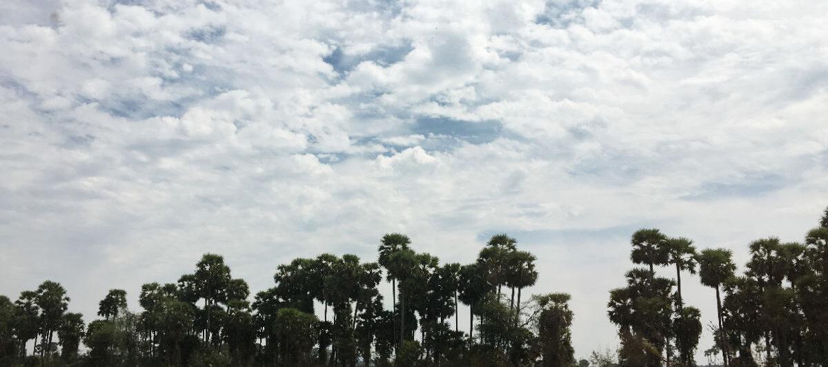 アーンドラプラデーシュ州の景色