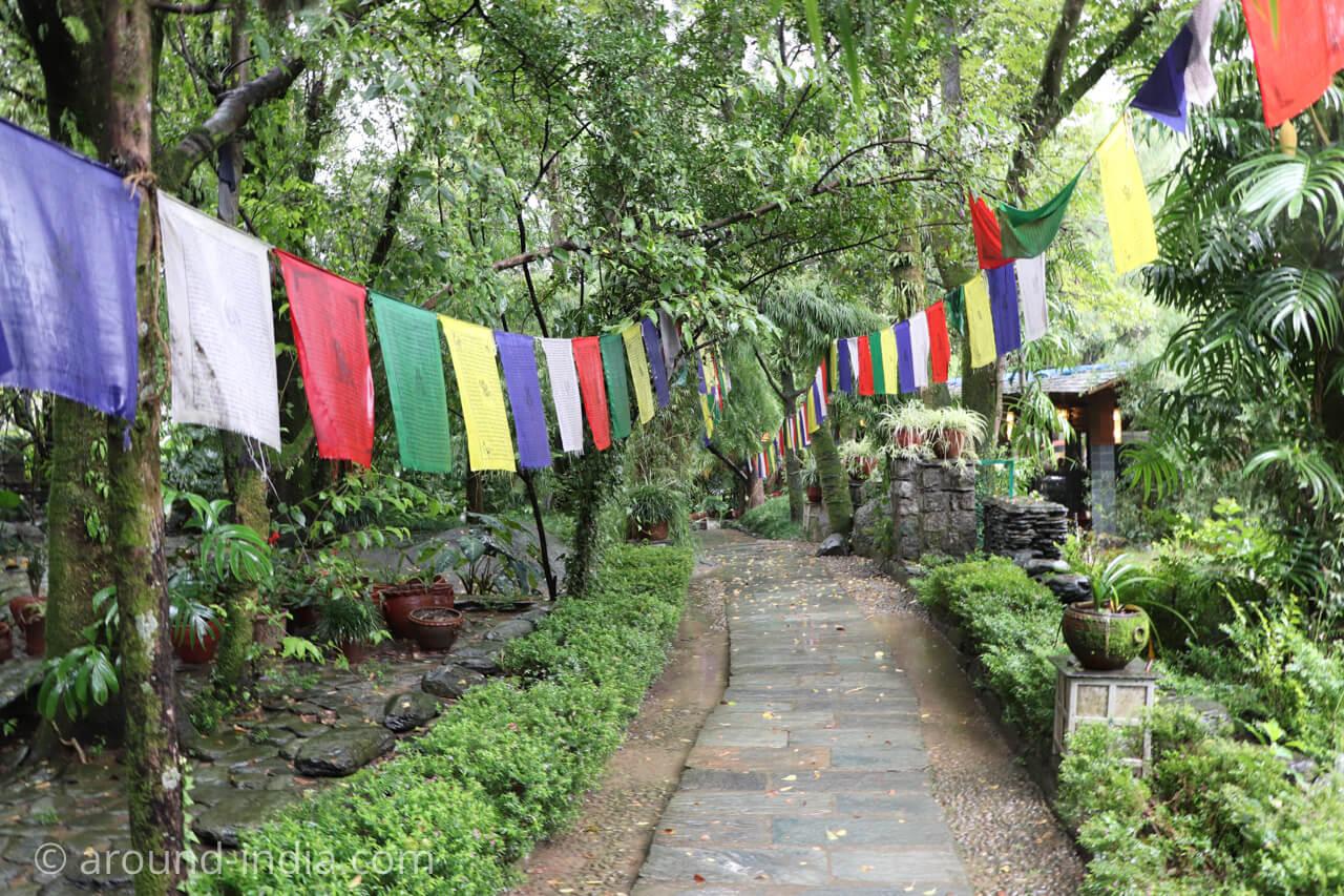ダラムサラのノルブリンカチベット芸術 ダラムサラのノルブリンカチベット芸術 ルンタの道