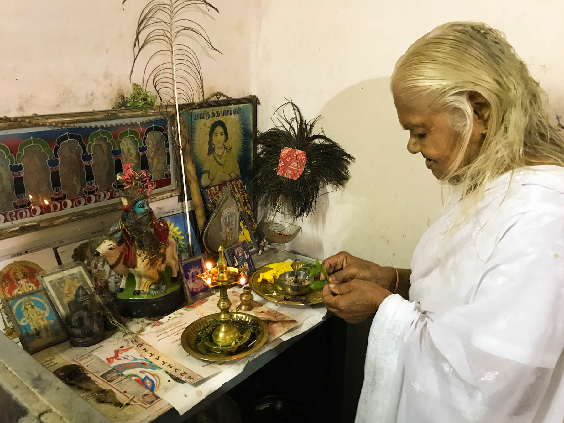 ケララの村のお宅で、トゥルシーを捧げてお祈りするおばあさん