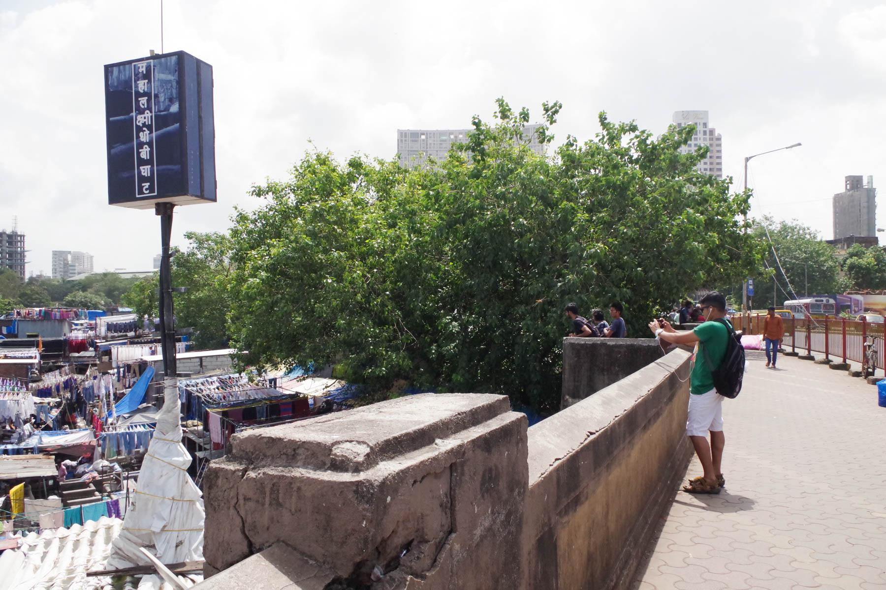 ムンバイ 巨大洗濯工場 ドービーガート マハラクシュミ駅の撮影スポット