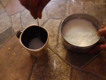 タミルの発酵水ごはん