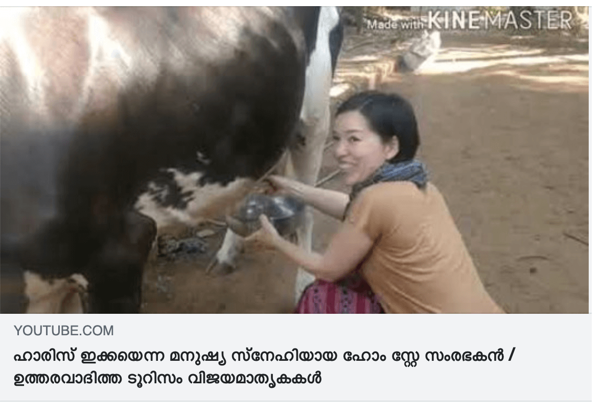 牛の乳を搾るAROUND INDIAが、Kerala Responsible Tourismに登場